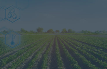 Crop Management Software for Sustainable Farming