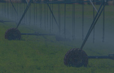 Smart Irrigation in Agriculture: How IoT Takes AgTech to the Next Level
